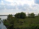 Kanał Gliwicki i okolice :: Okolice kanału gliwickiego
